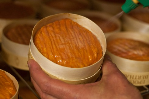 Epoisses being sprayed in Marc de Bourgogne
