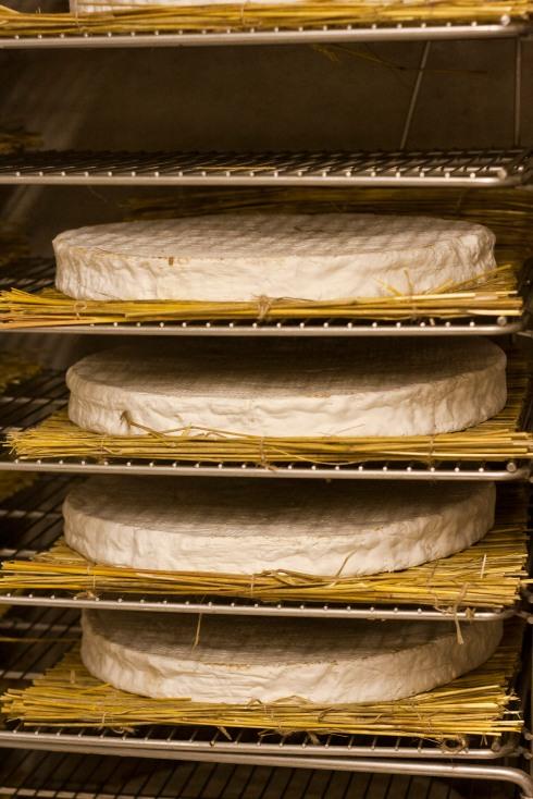 Genuine Brie de Meaux
