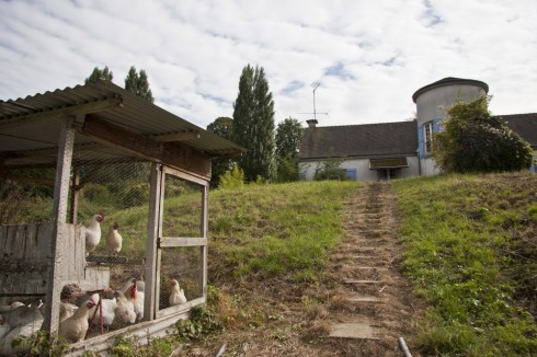 Yamashita's Farm